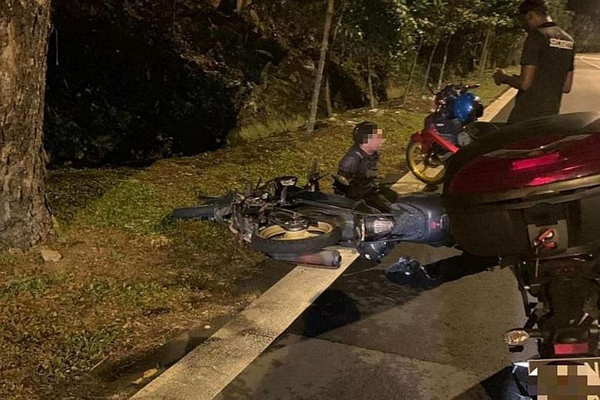 Photos of the incident show a motorcycle on its side, with a rider sitting next to it, while a dead deer lay in the middle of the road.