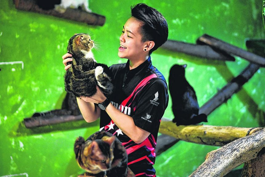 Singapore bowler Shayna Ng says the Cat Welfare Society hopes to reduce cat abuse and help every animal find a loving home.