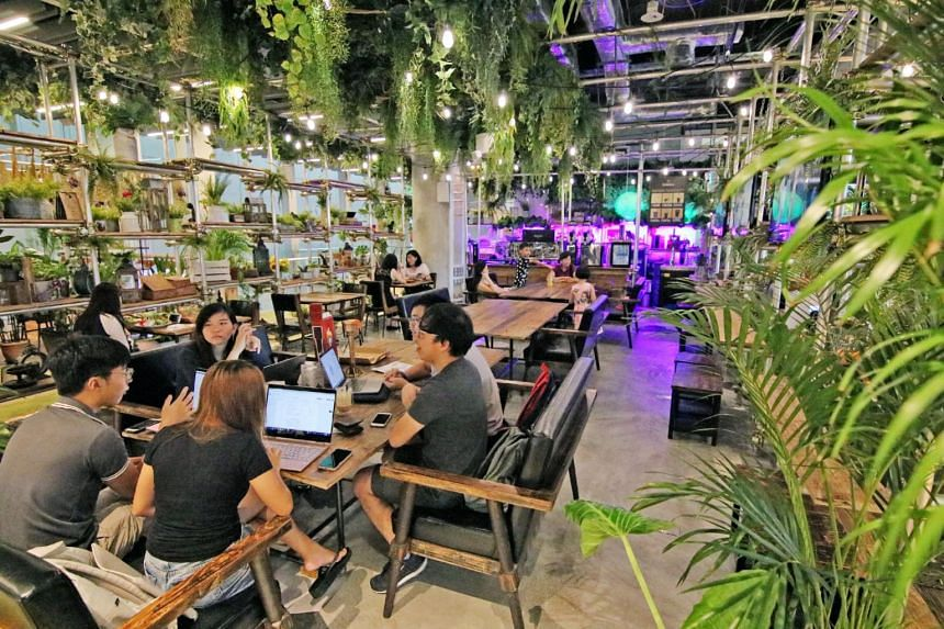 At Walking on Sunshine, a garden-themed Korean hair salon on the third floor of Orchard Central, customers can have their meals while getting their hair done.