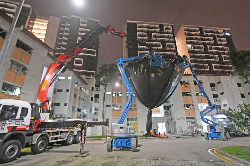 After two years of trying to solve the issue of noisy mynahs in Potong Pasir, the Agri-Food and Veterinary Authority is testing the use of a giant trap.