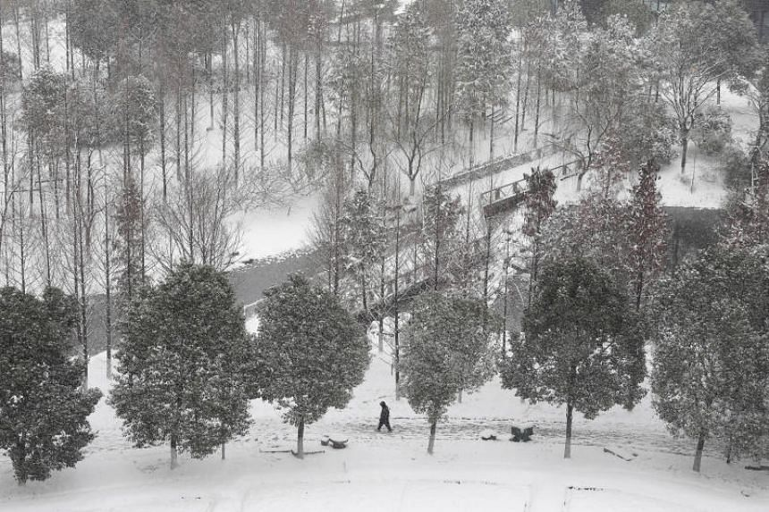 A man walks at the snow-covered Shanshan wetland in Wuhan, Hubei province, China, on Dec 30, 2018.