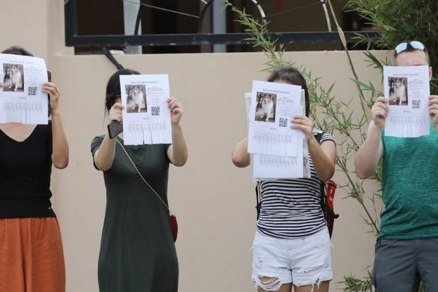 Activists from the dog community and their friends holding up posters of a missing dog outside the facility on Jan 3.