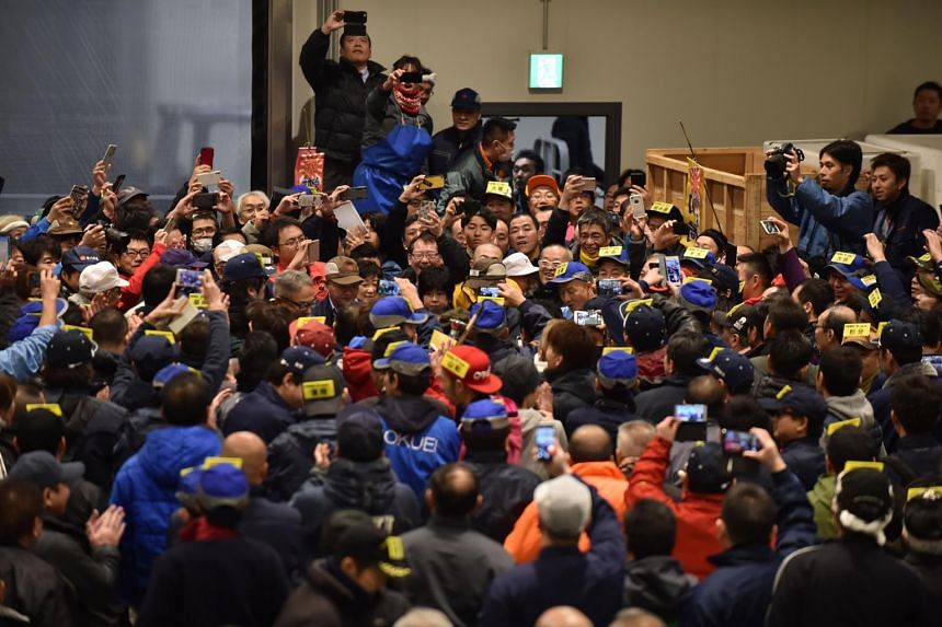 Wholesalers participate in the new year's first auction of tuna at the Toyosu Market in Tokyo, on Jan 5, 2019.