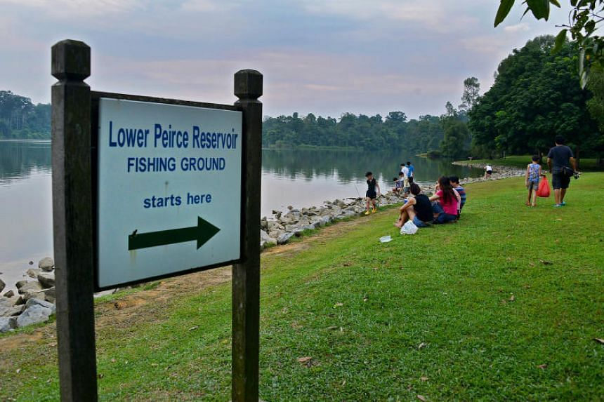 The fishing grounds, which reopened on Jan 7, were closed after motoro rays were spotted at Lower Peirce Reservoir on Dec 20, 2018.