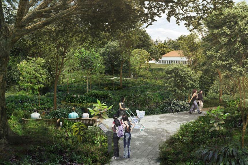 OCBC Arboretum.