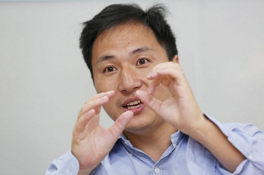"The government has halted work at Chinese scientist He Jiankui's lab and is carrying out an investigation, saying it would take a ""zero tolerance attitude in dealing with dishonourable behaviour"" in research."