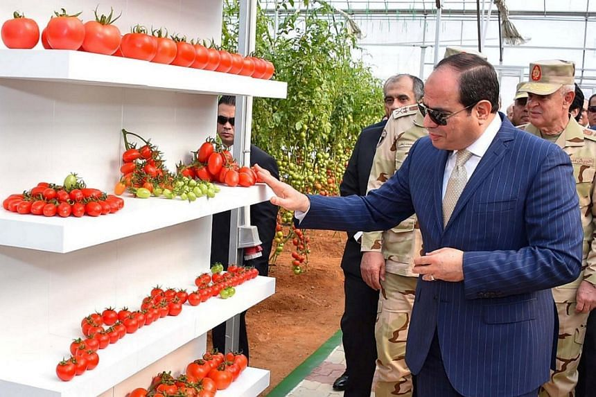 Egypt's President Abdel Fatah al-Sisi exhorted his people to become physically active.