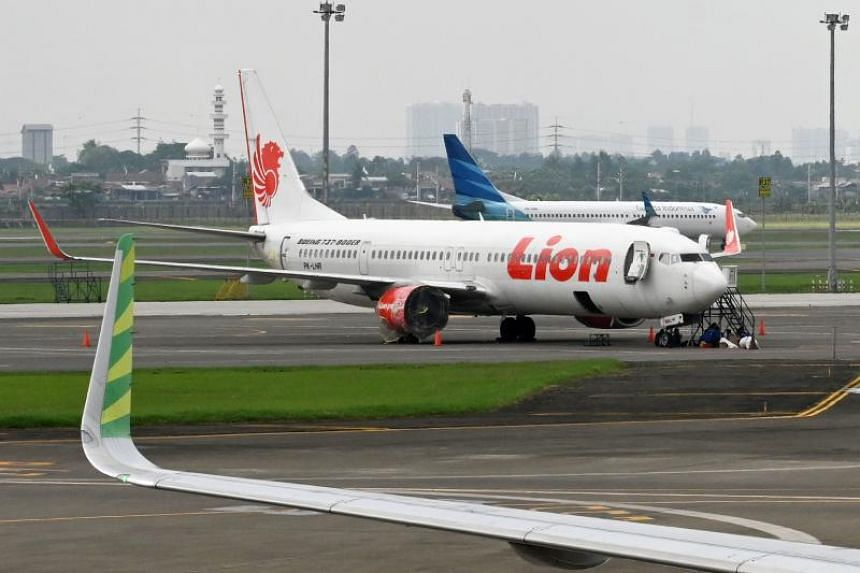 The price cuts may make air travel affordable to more Indonesians and contribute to the nation's economic and infrastructure growth, the the Indonesian National Air Carrier Association said.