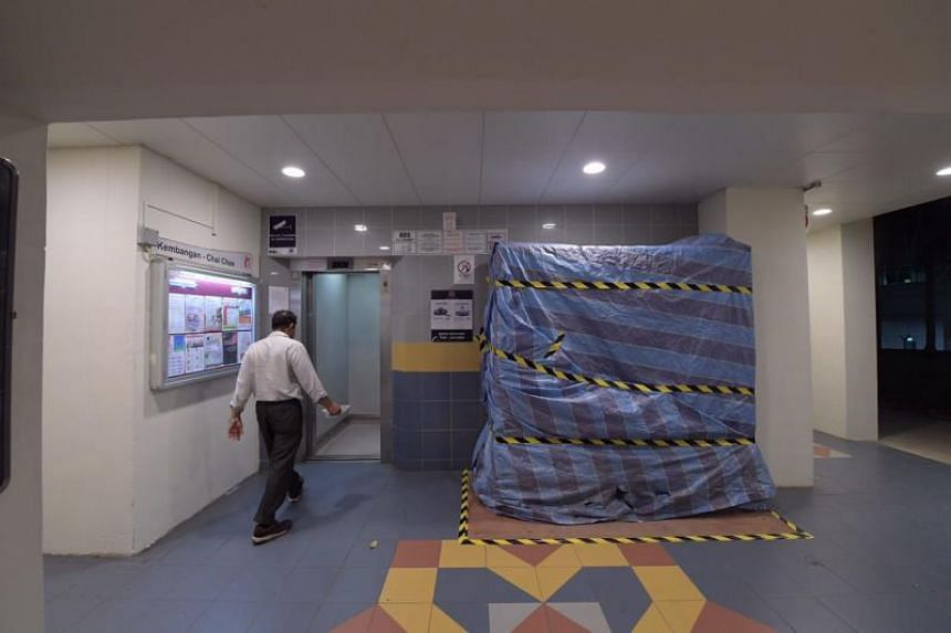 The worker was part of a team carrying out lift replacement works at Block 805, and was transporting debris from the fifth to the ground floor when the accident happened on Jan 14, 2019.