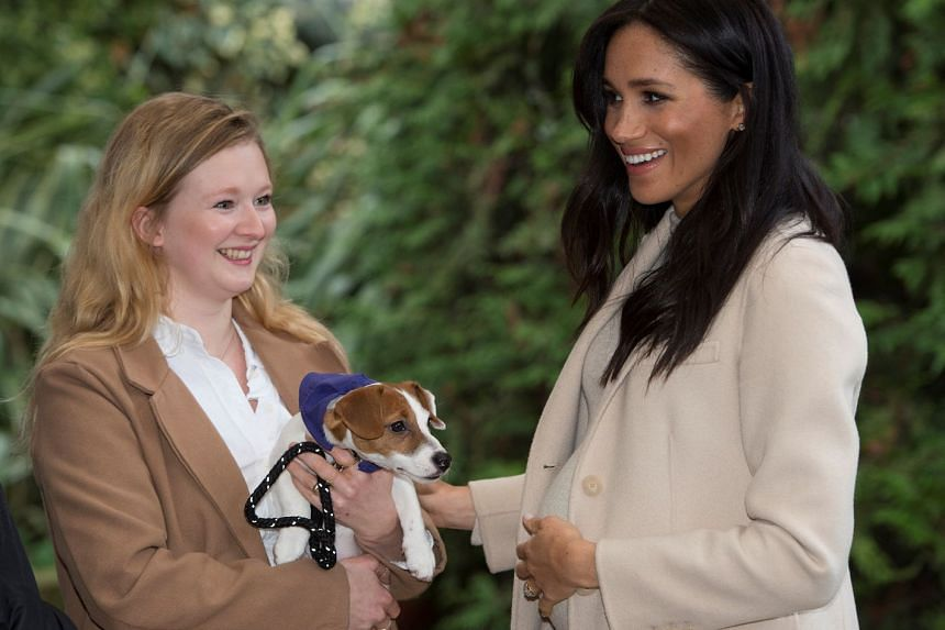 "Meghan (right) meets a Jack Russell named ""Maggi"" during a visit to the animal welfare charity Mayhew in London."
