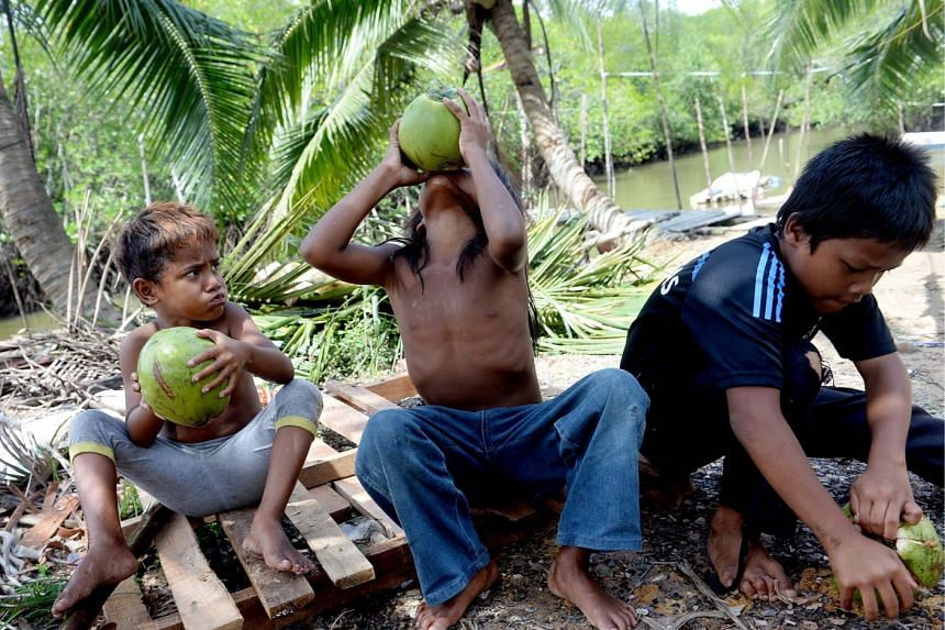 Malaysia's indigenous people have been pitted against logging and palm oil companies keen to tap the forested areas in which they live.