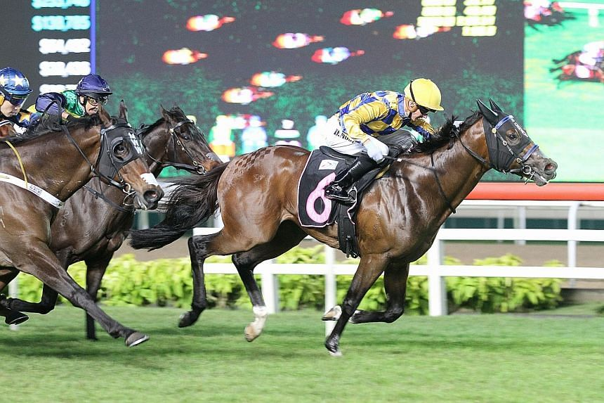 No Fun No Gain (No. 6) proving too good in Race 3 at Kranji last night for his second victory from just three starts.