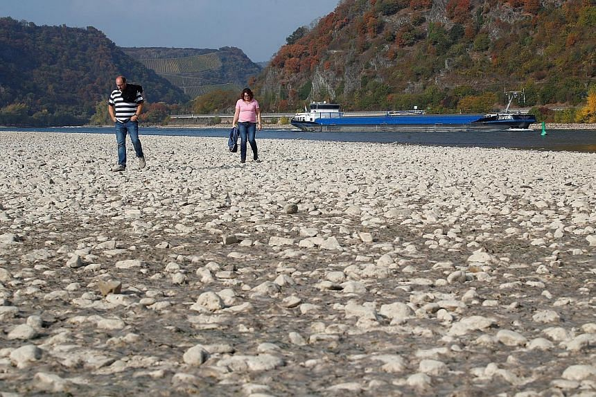 The exposed river bed of the Rhine near Bacharach, Germany. Water levels hit a historic low level late last year and freight vessels could not sail fully loaded on Europe's most important waterway.