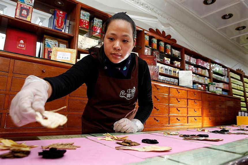 Ms Gu Cheng-pu at work in her family's TCM shop in New Taipei City. Such shops are dying out because the authorities have not issued any new licences since 1998.