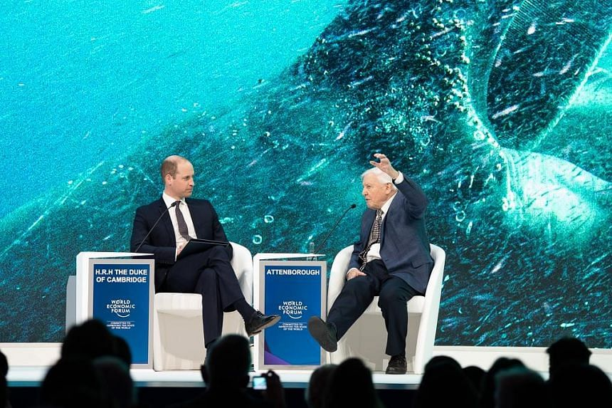 Prince William (left) interviewing Sir David Attenborough, a broadcaster and naturalist, on climate change on Tuesday at the World Economic Forum.