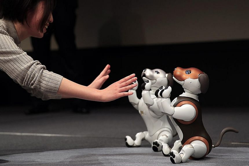 The latest version of Sony's Aibo robotic dog is equipped to roam around the house, checking on people or pets, and send progress reports via smartphone to family members or owners located elsewhere.