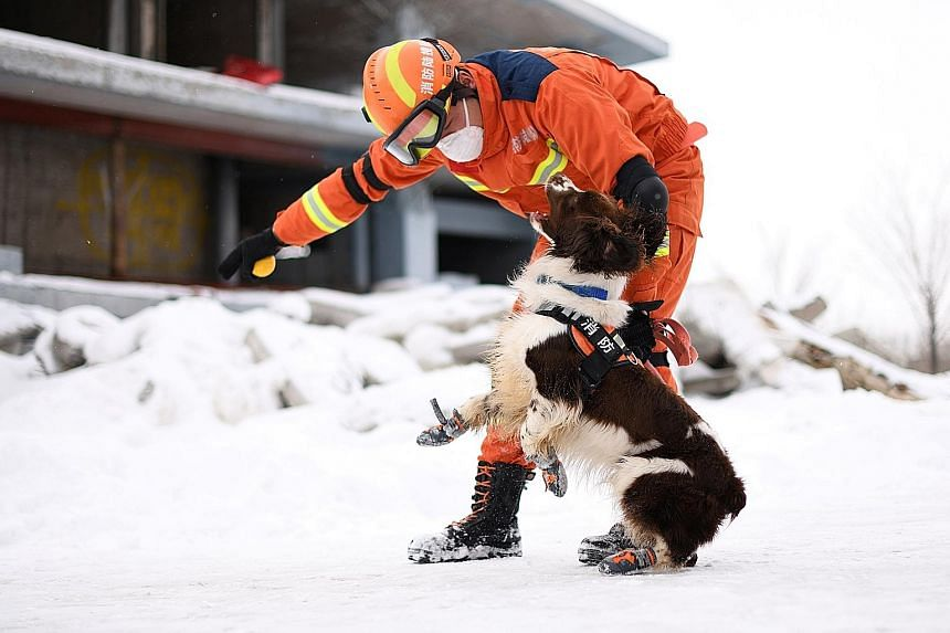 A firefighter and a rescue dog taking part in an earthquake rescue training at a base in Urumqi, Xinjiang Uighur Autonomous Region, China.