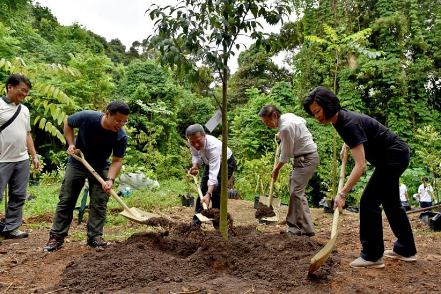 From left: Dr Adrian Loo, group director, conservation, National Parks Board, watches as Mr Desmond Lee, Minister for Social and Family Development, Dr Vivian Balakrishnan, Foreign Minister, Professor Leo Tan, chairman of the Garden City Fund, and Ms