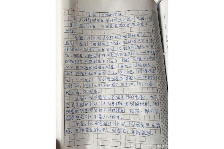The essay was posted on Jan 17 on China's microblogging platform Weibo by his teacher at Luoyang International School.