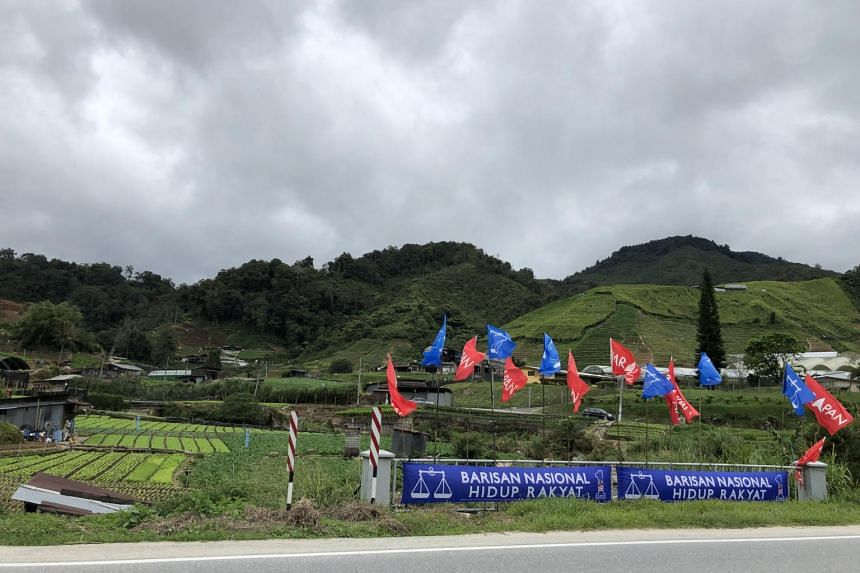 Flags of ruling coalition Pakatan Harapan and opposition Barisan Nasional are seen in the Ringlet district against the backdrop of farms in Cameron Highlands.