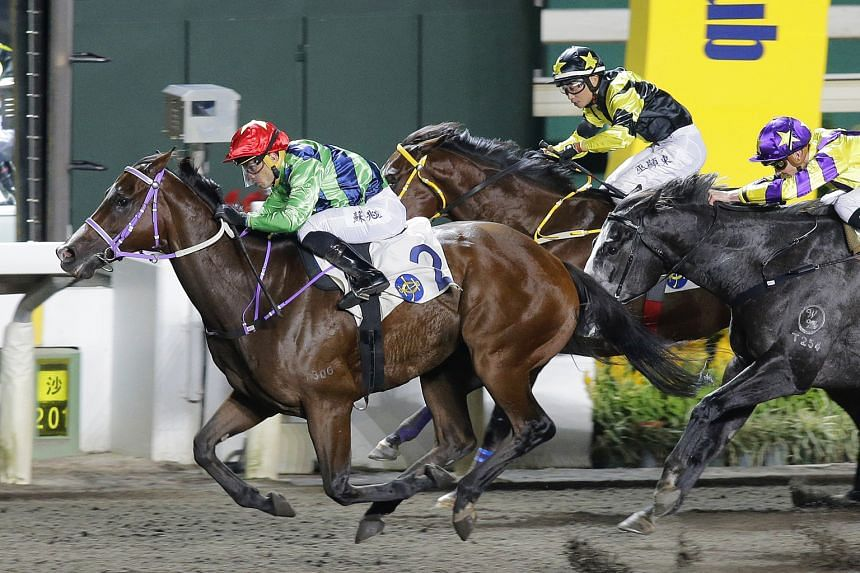 Team Fortune (jockey in red cap) should take tomorrow's Race 6 at Sha Tin if he can get the splits at the right time.