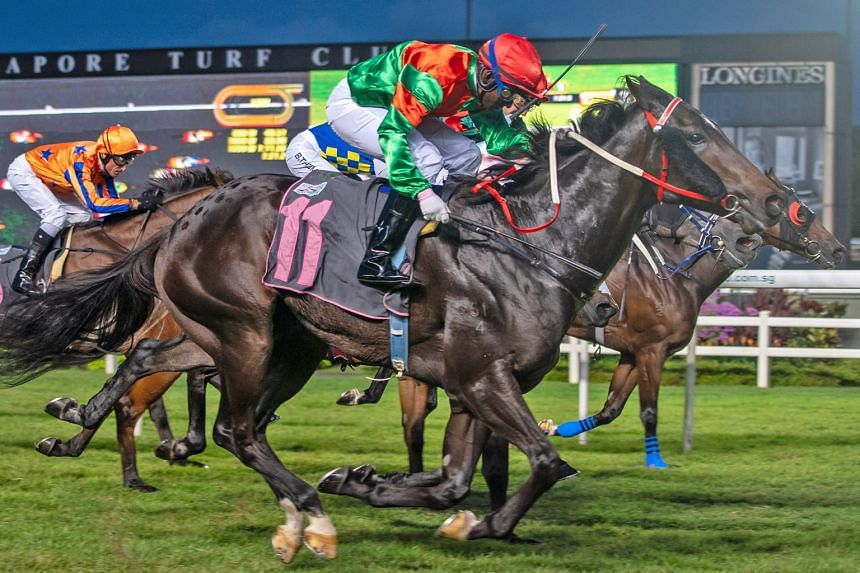 Gentlemen Agreement (No. 11) giving jockey S John his comeback victory in Race 3 at Kranji last night.