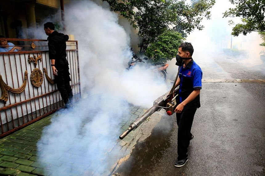 A worker sprays insecticide with a fogging machine to eradicate mosquitoes in a residential area in Bintaro, South Tangerang, on Jan 24, 2019.