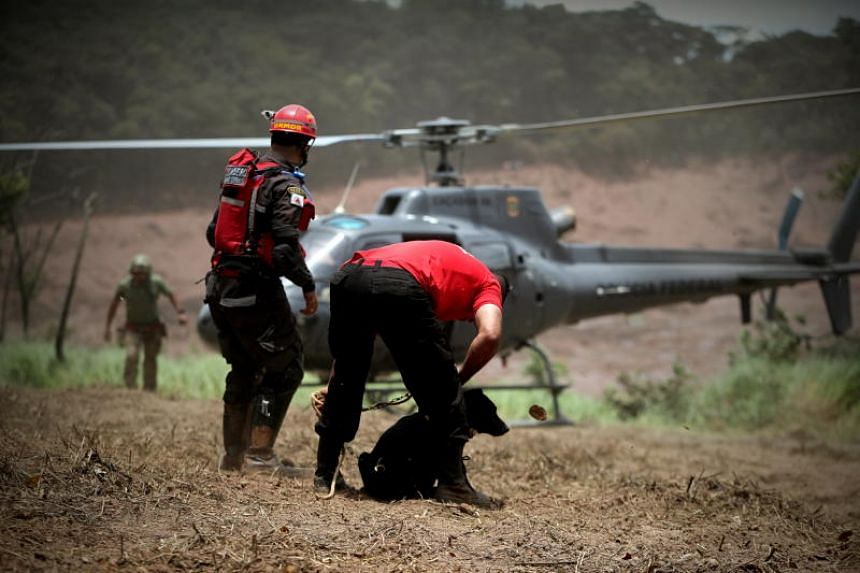 Firemen rescue a dog during the search and rescue work of the victims of the dam breakage of the company Vale, in Brumadinho, municipality of Minas Gerais, Brazil, on Jan 27, 2019.