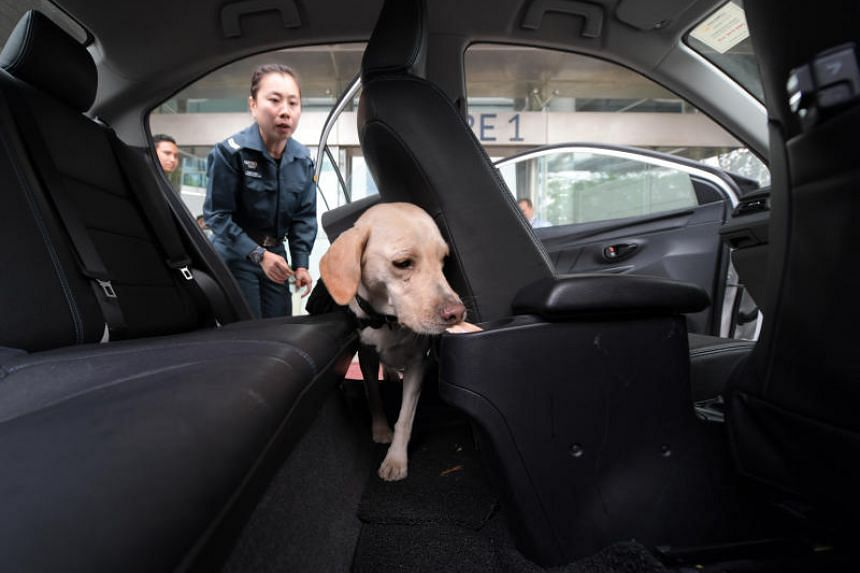 Corporal Chang Li Ting and her dog, Naomi, demonstrate how a car is searched for explosives at the Certis Cisco Centre on Jan 29, 2019.