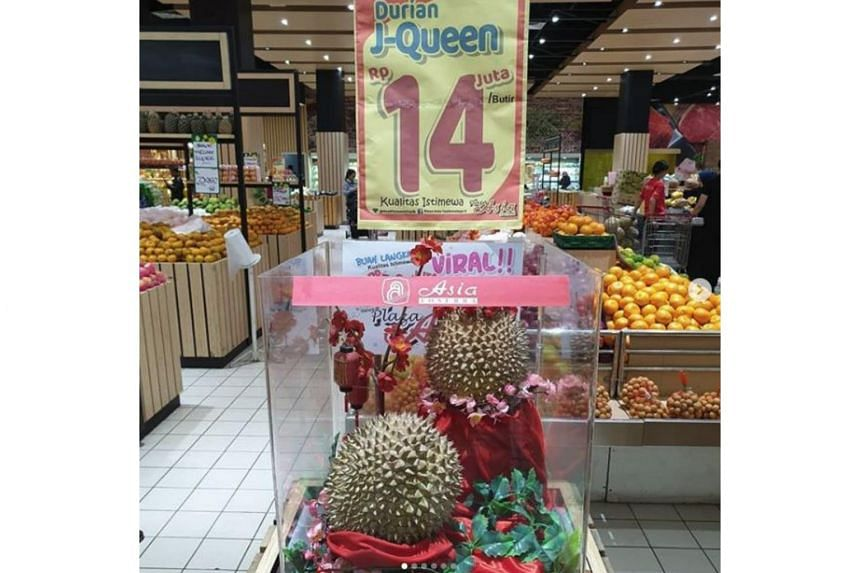 Mr Aka, who discovered the breed,  claimed that J-Queen could only be harvested every three years, with each tree only having 20 durians at most.