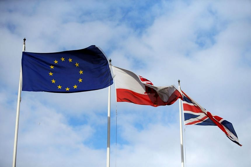 A European Council document, laying out proposals to give British nationals short-stay, visa-free access to the EU's borderless Schengen area after Brexit, described Gibraltar as a colony.