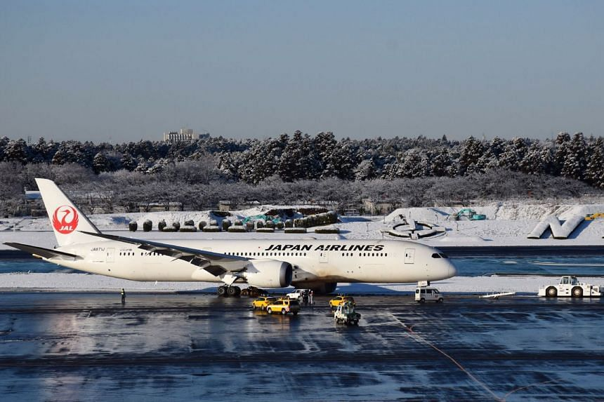The Japan Airlines plane is said to have skidded off a patch of snow on a runway at Narita Airport in Chiba Prefecture, on Feb 1, 2019.