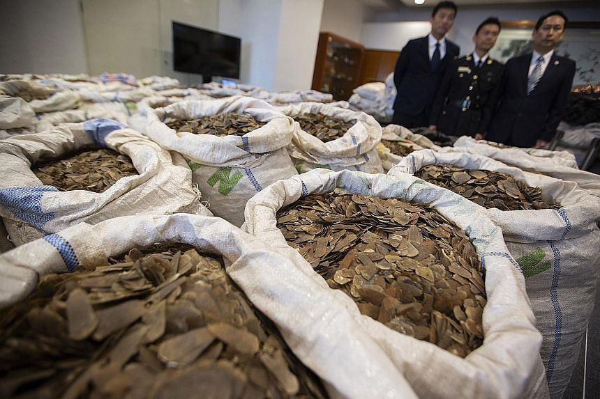 The value of the seized goods - which equates to around 500 elephants and up to 13,000 pangolins - was more than HK$62 million (S$10.7 million).