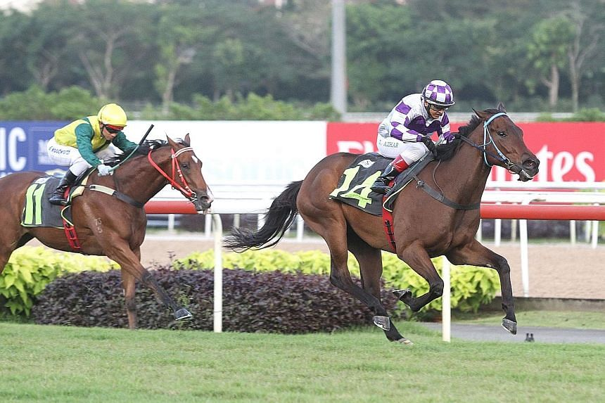 Although rated as only 90 per cent fit by his trainer, CT Kuah, newcomer Winning Hobby (No. 14) made a dream debut with a 21/4-length victory over Super Smart in Race 2 at Kranji last night.