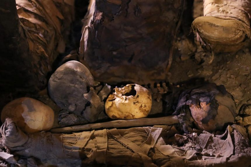 Skulls and bones inside a tomb during the presentation of a new discovery at Tuna el-Gebel archaeological site in Minya Governorate, Egypt, on Feb 2, 2019.