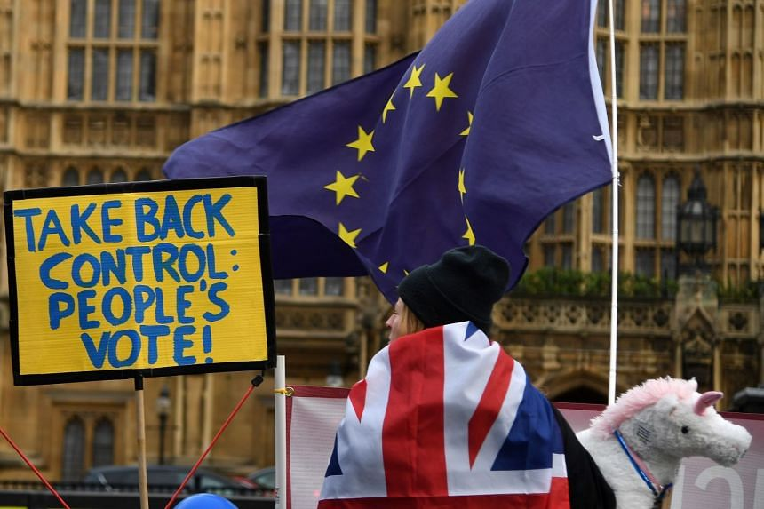 A pro-EU campaigner attends a rally outside parliament in London.