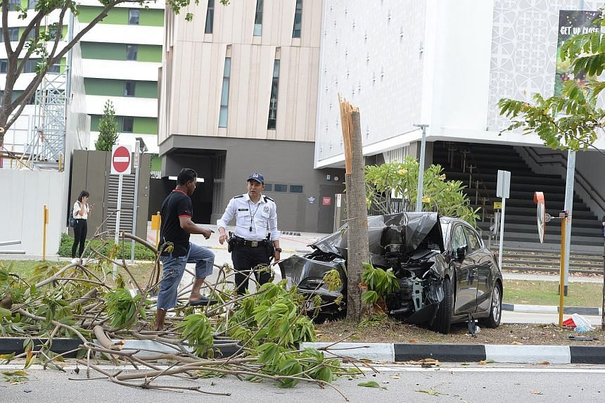 The car's front and hood were severely damaged and bent out of shape after the vehicle breached the kerb and crashed into the tree in Punggol yesterday.