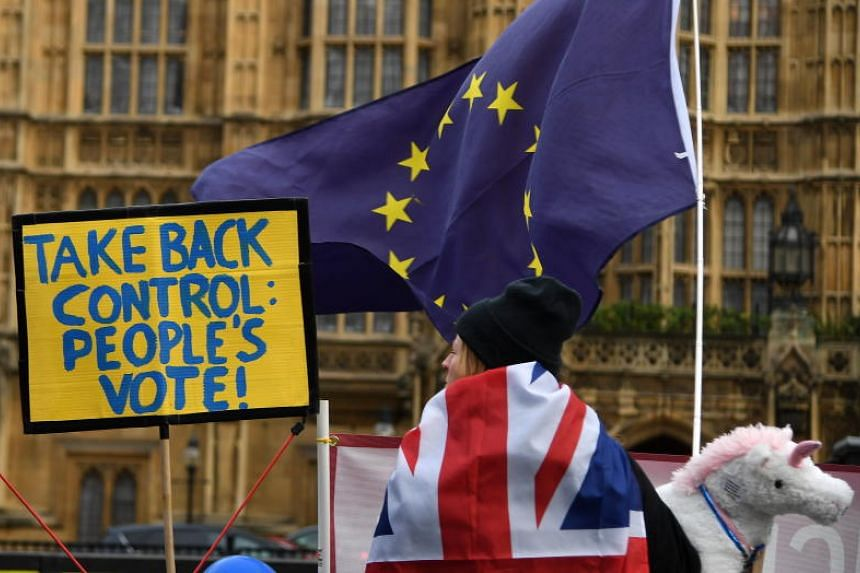 A pro-EU campaigner attends a rally outside of Parliament in London, Britain, on Jan 31, 2019.