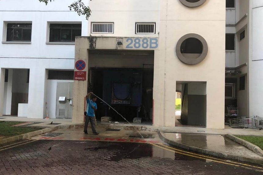 Ms Siivashinni Johanan, 29, and her daughter Chiryllanyaa Ganesan, were believed to have fallen from a height at Block 288B Jurong East Street 21.