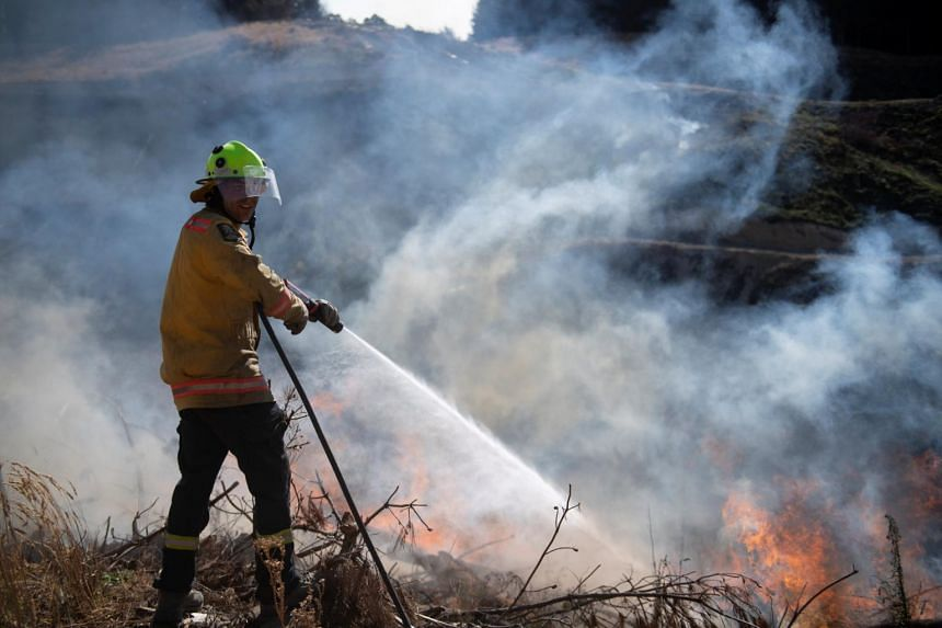 New Zealand Defence Force firefighters combat the Richmond fire near Nelson, South Island, New Zealand, Feb 8, 2019.