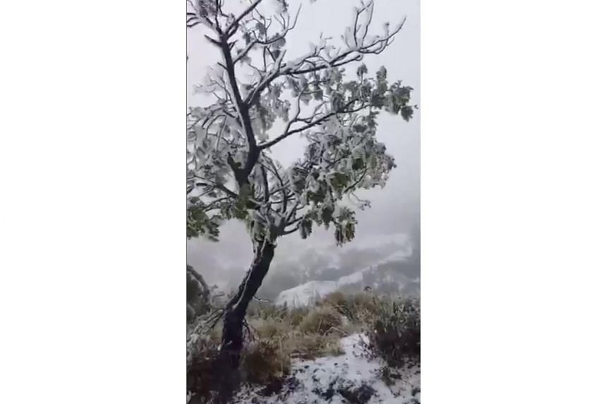Hawaii saw a mixed bag of bizarre precipitation, with several inches of snow fell on Haleakala, a shield volcano in East Maui in addition to winds of up to 307kmh.