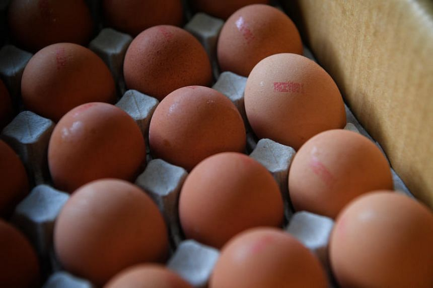 Recounting how Malaysia announced in December 2018 that it was considering limiting or stopping egg exports, and restricting exports of certain types of seafood, Minister for the Environment and Water Resources Masagos Zulkifli said it will not be th