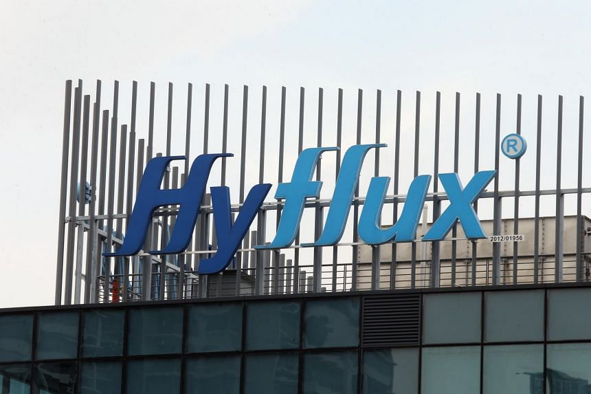 In the light of the many unanswered questions, the relevant authorities should initiate an investigation into Hyflux's past operations and financial performance.