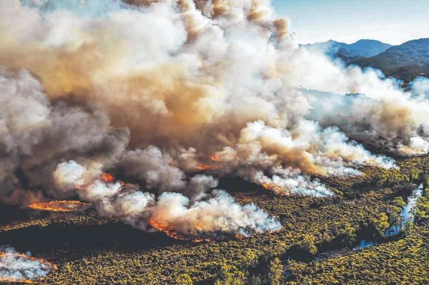 A large bushfire burns in Tasmania, Australia. Wildfires have scorched over 205,000 ha in the southwest, centre and northwest of the island - fuelled, scientists believe, by climate change.
