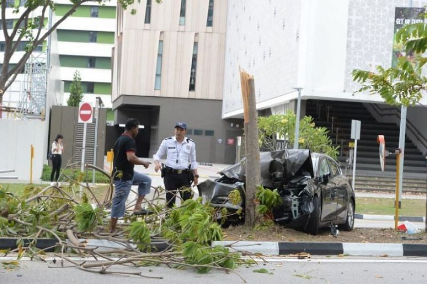 The car breached the kerb and hit the tree at high speed before swerving 90 degrees and hitting three people waiting to cross the road in Punggol Central on Feb 3, 2019.