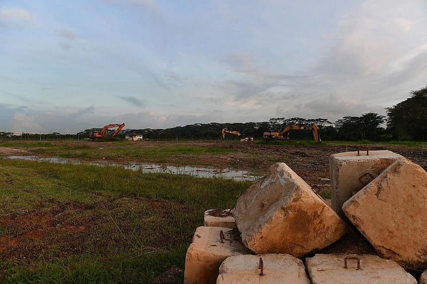 A plot of land in Lim Chu Kang, in this picture taken in May 2017. Two plots of land at Lim Chu Kang were not awarded in the tender exercise as no proposals met the tender requirements. But bidders experienced more success in Sungei Tengah, where all