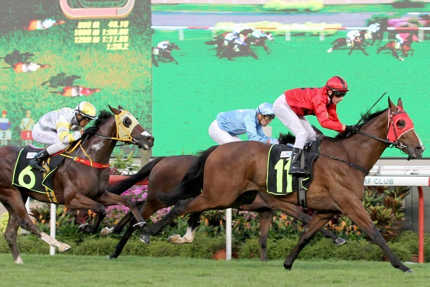 Stay The Course (No. 11) producing a quick turn of foot in the straight to win at his third start at Kranji last night. ST PHOTO: SHAHRIYA YAHAYA