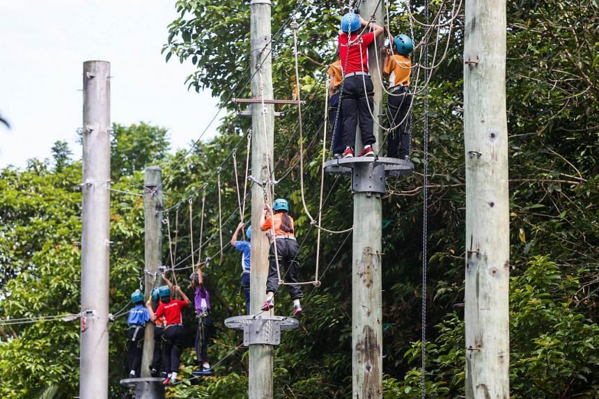 Students taking part in a high element activity during a school camp.