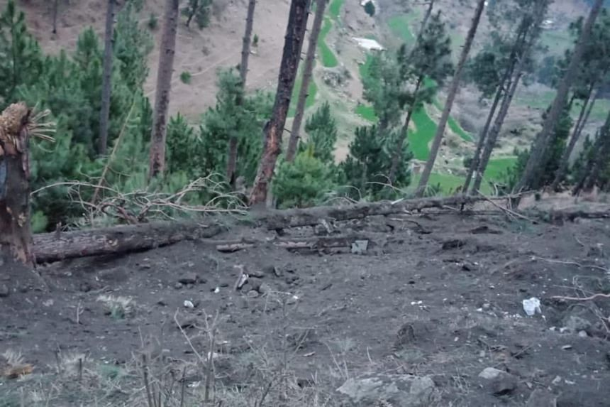 Damaged trees at a site in Balakot, Pakistan, after the Indian Air Force dropped their payloads on Feb 26, 2019.
