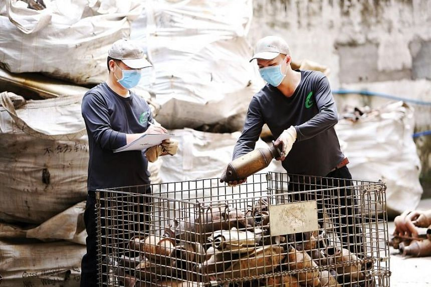 BR Metals production staff sorting scrap catalytic converters for de-canning and milling.